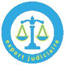 Expert judiciaire